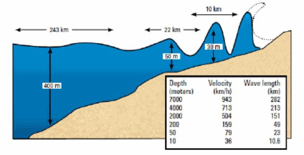 התקדמות והתפתחות גל צונאמי בים